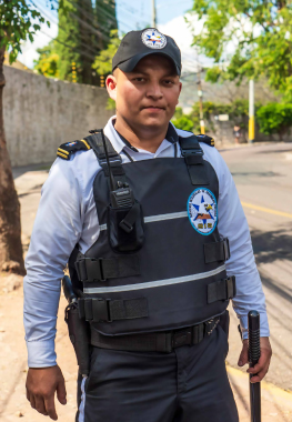 Guardia-5-Security-SIS